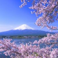 viaggio di nozze - monte fuji