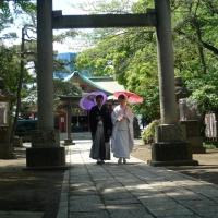 viaggio-nozze-giappone3